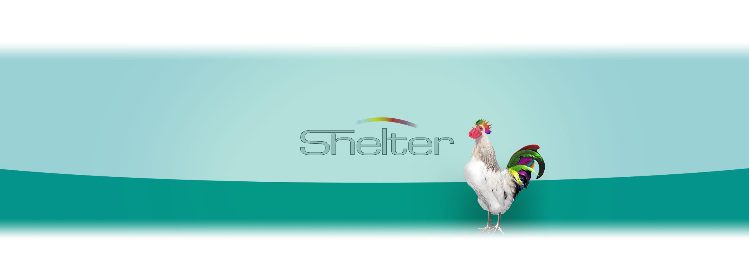 shelter-gmbh-titz-informationen